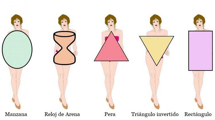Tipos de cuerpo que debes conocer