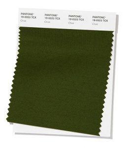 Color verde caqui primavera-verano 2020 (chive - cebollino)