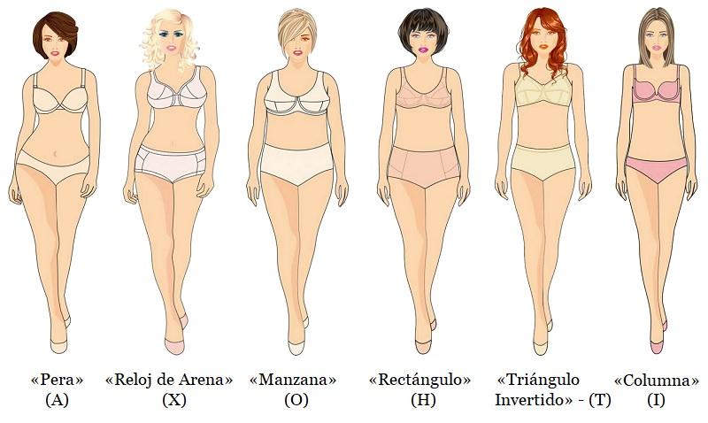 6 tipos de cuerpo